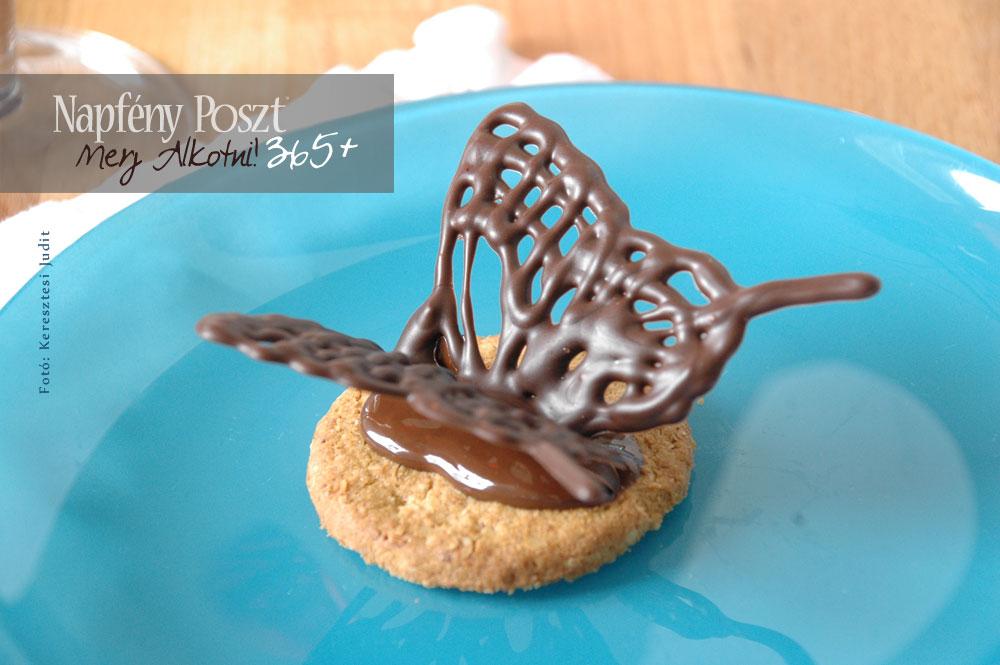 csokipillango nyito02