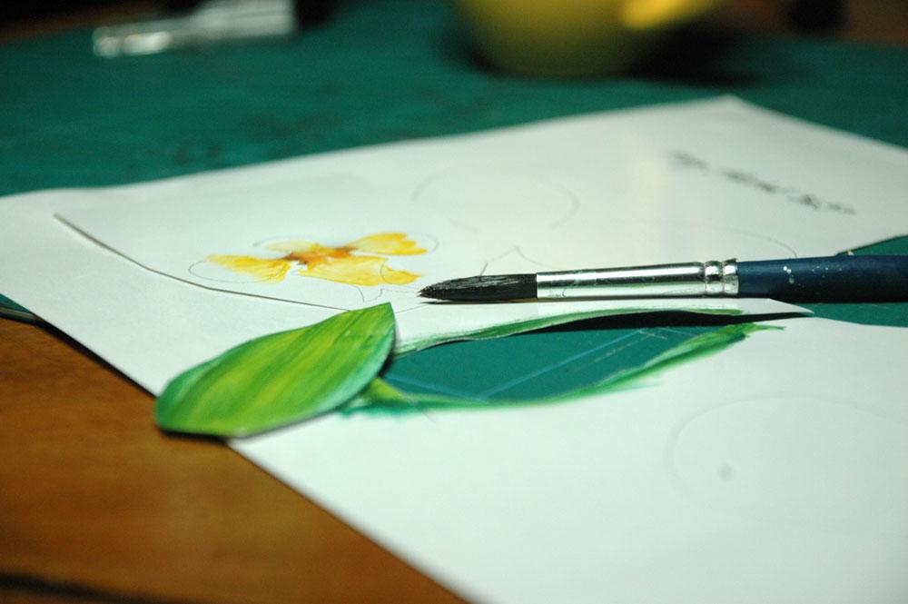 orchidea gyuru 01