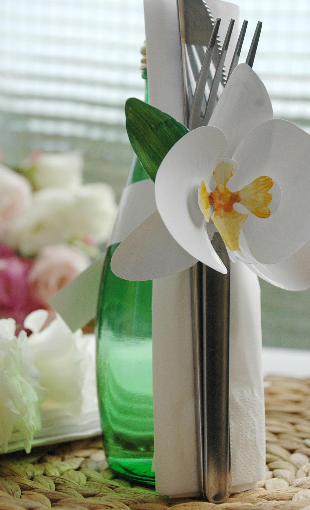orchidea gyuru 091