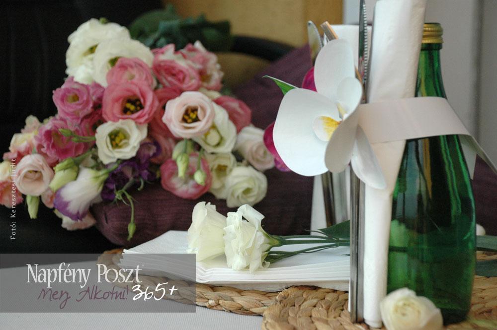 orchidea gyuru nyito02