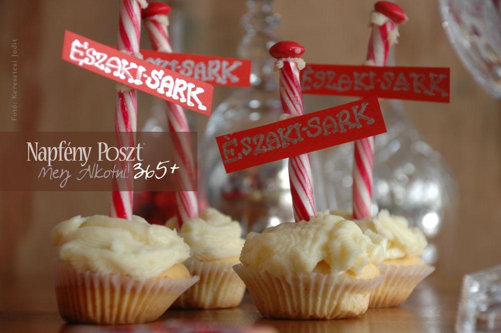 eszakisark cupcake nyito01