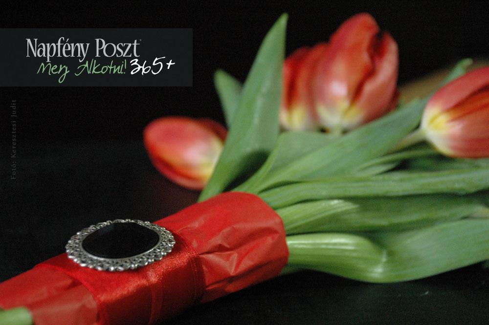 tulipan es bross nyito02